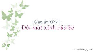 Giáo án KPKH: Đôi mắt xinh của bé